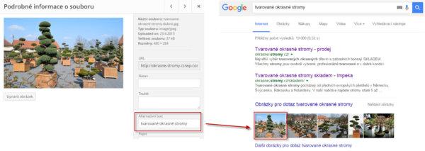 SEO tip - popište obrázky pro Google a Seznam